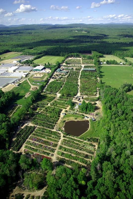 Millican Nurseries Inc Picture